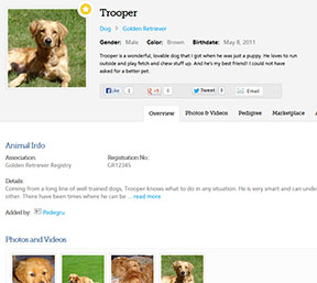 screenshot of animal profile